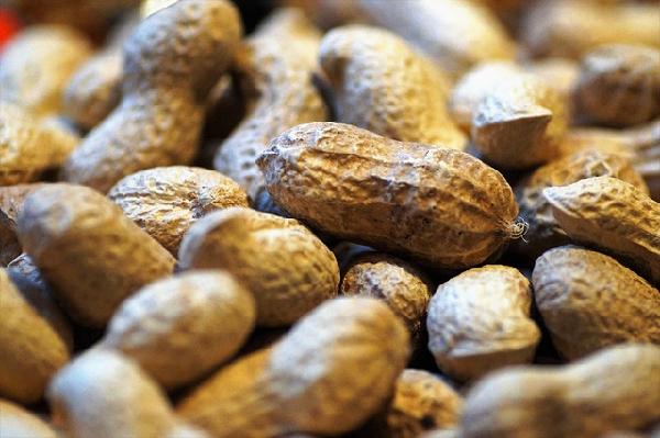 節分の豆まきは落花生と大豆どっちが本当?撒いた豆の食べ方