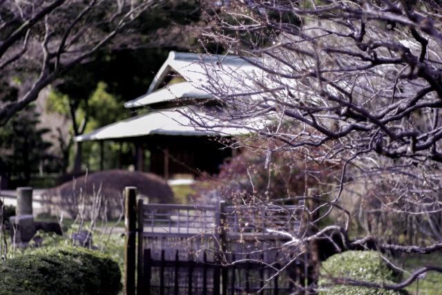 皇居東御苑の入場料は無料!?桜の見頃の必須ルートはこの入口と出口