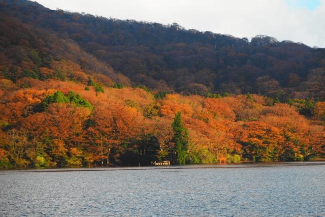 箱根の紅葉はいつ頃が見頃?おすすめのデートコースを恋人同士に紹介